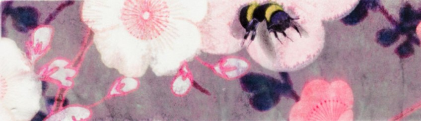 cropped-scent-hive-banner-3.jpg